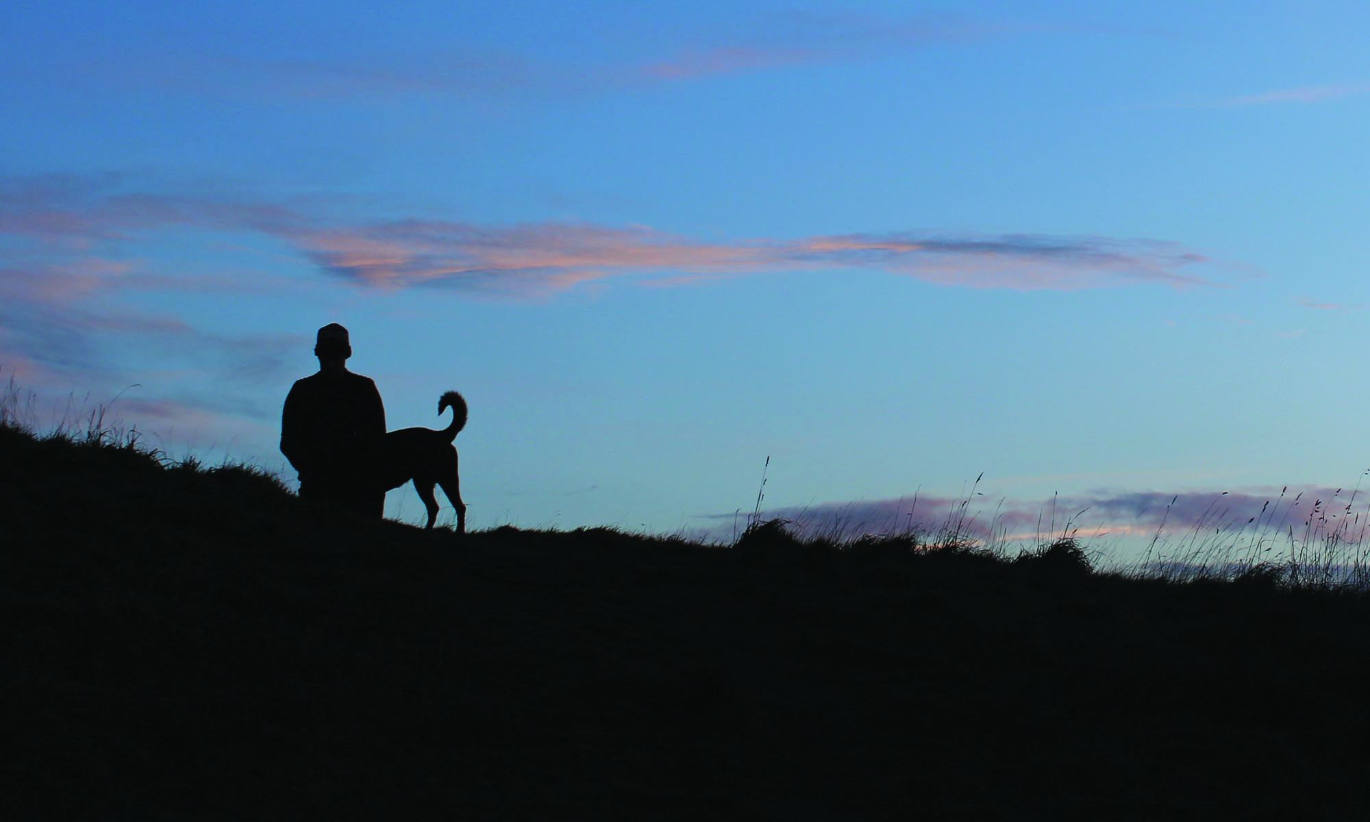Kinross Dog walkers